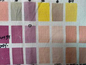 [Indigo dyeing]Dyeing experiment of vegetable dye